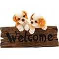 CANI WELCOME FUNNY